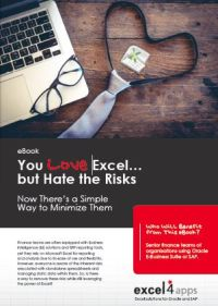 LOVE Excel…but Hate the Risks?